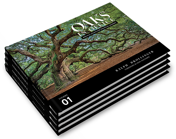 Oaks in Office by Ralph Drollinger